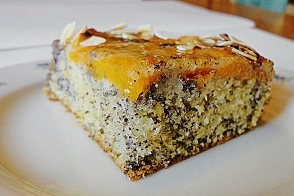 Waldviertler Marillenkuchen (Aprikosenkuchen) 4