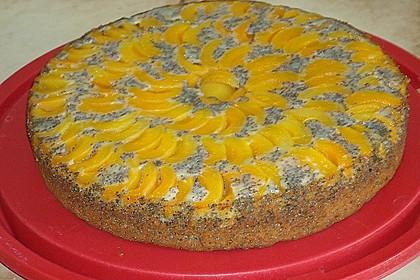 Waldviertler Marillenkuchen (Aprikosenkuchen) 16