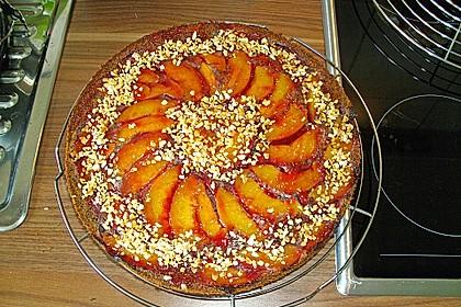 Waldviertler Marillenkuchen (Aprikosenkuchen) 3