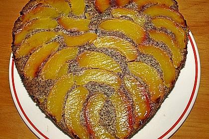 Waldviertler Marillenkuchen (Aprikosenkuchen) 10