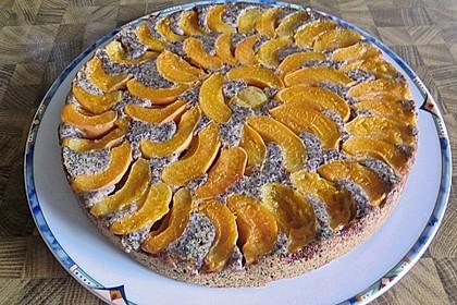 Waldviertler Marillenkuchen (Aprikosenkuchen) 13