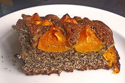 Waldviertler Marillenkuchen (Aprikosenkuchen) 8
