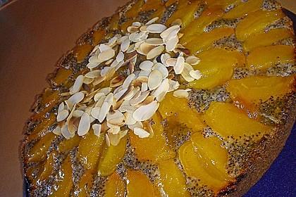 Waldviertler Marillenkuchen (Aprikosenkuchen) 12