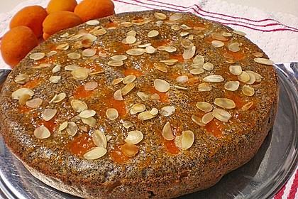 Waldviertler Marillenkuchen (Aprikosenkuchen) 7