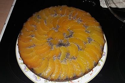 Waldviertler Marillenkuchen (Aprikosenkuchen) 14