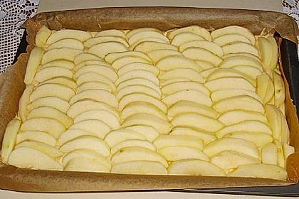 Apfel-Sandkuchen vom kleinen Blech 1