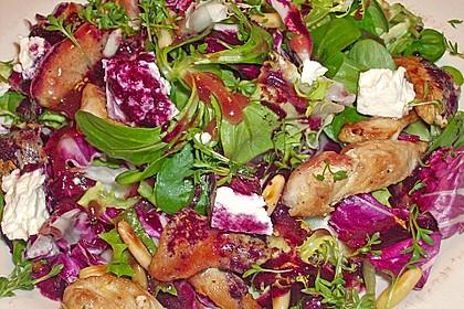 Blattsalate mit Hähnchenstreifen und cremigem Heidelbeerdressing 9