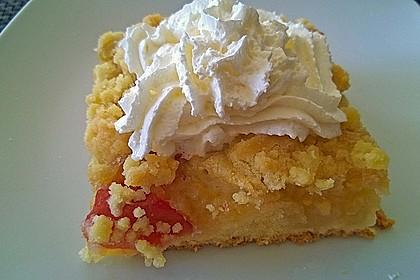 Apfelkuchen mit Streuseln (Bild)