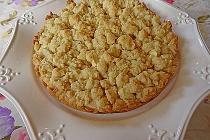 Apfel-Streuselkuchen 1