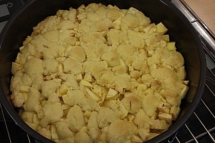 Apfel-Streuselkuchen 9