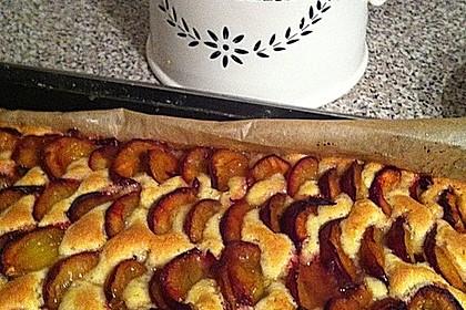 Pflaumenkuchen auf dem Blech 4