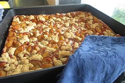 Zwetschgenkuchen mit Streusel 8