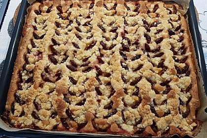 Zwetschgenkuchen mit Streusel 11