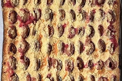 Zwetschgenkuchen mit Streusel 15