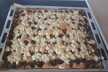 Zwetschgenkuchen mit Streusel 34