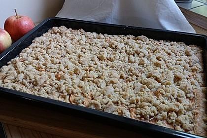Zwetschgenkuchen mit Streusel 3