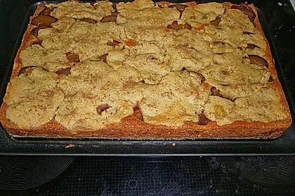 Zwetschgenkuchen mit Streusel 36