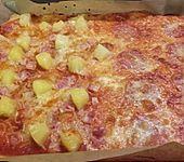 24 Stunden Pizzateig (Bild)