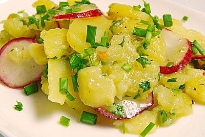 Kartoffel-Radieschen Salat mit Salatgurke und Kräutern 2