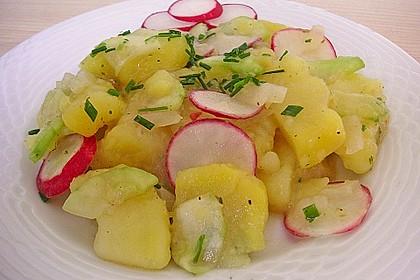 Kartoffel-Radieschen Salat mit Salatgurke und Kräutern 3