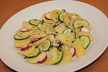 Kartoffel-Radieschen Salat mit Salatgurke und Kräutern 6
