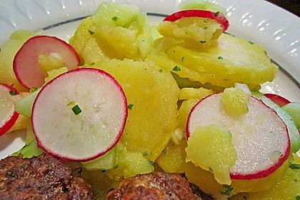 Kartoffel-Radieschen Salat mit Salatgurke und Kräutern 9