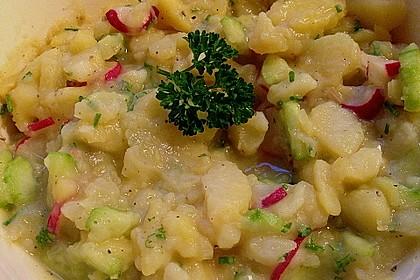 Kartoffel-Radieschen Salat mit Salatgurke und Kräutern 8