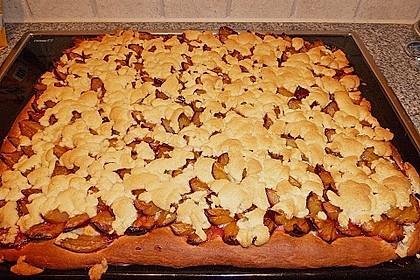 Pflaumenkuchen mit Streuseln 73