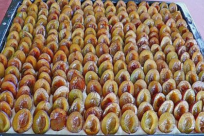 Pflaumenkuchen mit Streuseln 60