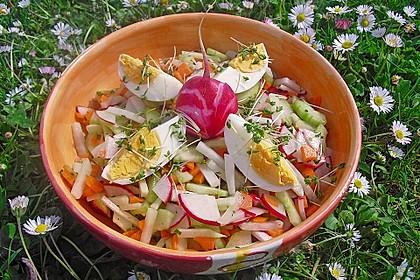 Frühlingssalat 2