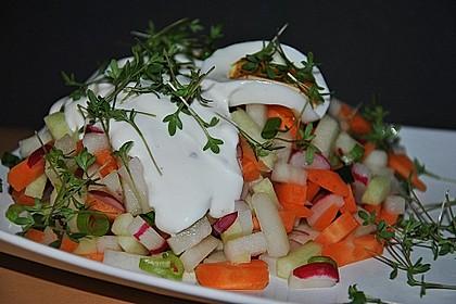 Frühlingssalat 3