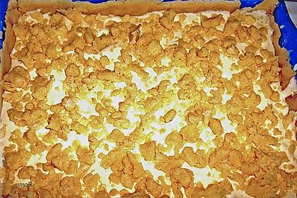 Mohnkuchen mit Quark und Streuseln 29