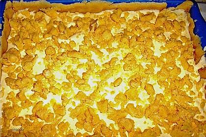 Mohnkuchen mit Quark und Streuseln 28
