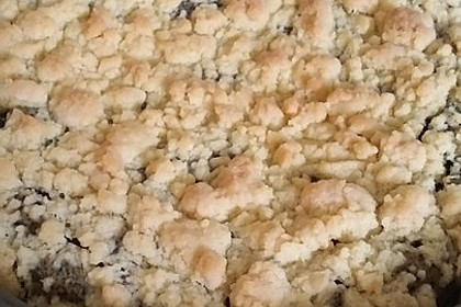 Mohnkuchen mit Quark und Streuseln 22