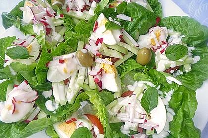 Bunte Kopfsalatnester mit Joghurt-Kräuterdressing 10