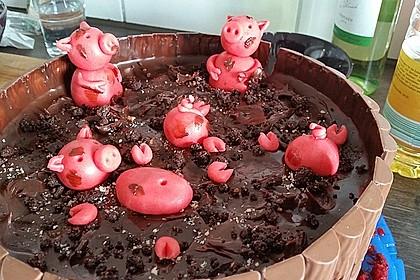 Philadelphia-Kuchen mit Schweinen im Schlamm 17