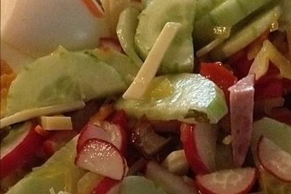 Wurstsalat mit Radieschen 17