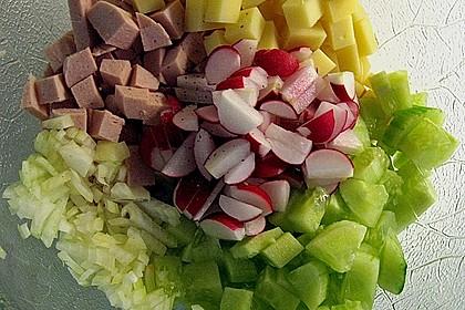 Wurstsalat mit Radieschen 14