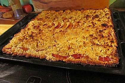 Bester Apfelkuchen mit Backpulverteig 1