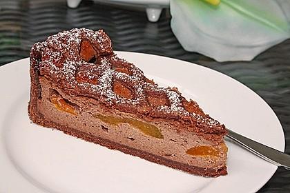Schokoladiger Aprikosen-Käsekuchen mit Gitter