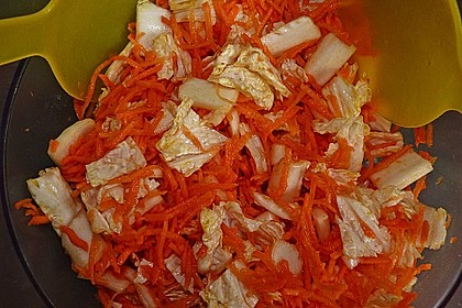 Chinakohl-Karotten Salat 10