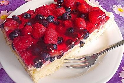Schneller Sommerkuchen bzw. Beerenkuchen 3