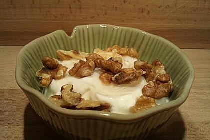 Griechischer Joghurt mit Honig und Nüssen 6