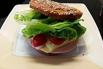 Low Carb Sandwich 4