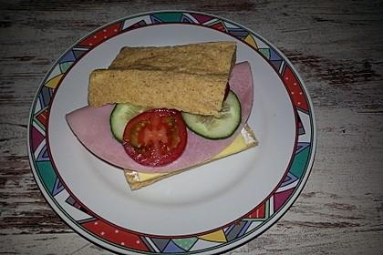 Low Carb Sandwich 36