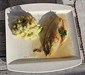 Selleriepüree mit Avocado (Bild)