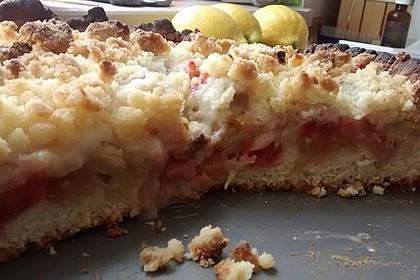 Rhabarber - Streusel Kuchen auf Quark - Öl Teig 20