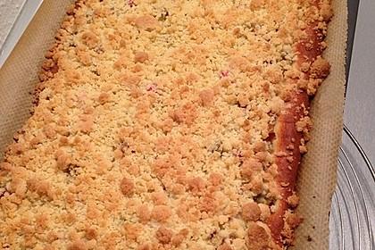 Rhabarber - Streusel Kuchen auf Quark - Öl Teig 18