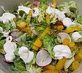 Eichblattsalat mit Paprika (Bild)
