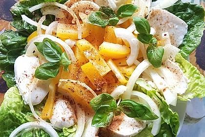 Quinoa-Mozzarella Salat 5